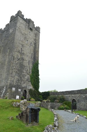 Dysert O'Dea Castle and Archaeology Centre: Dysert O'Dea Castle with resident tour guide/security guard