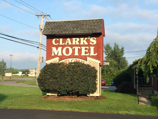 Clark's Motel : Well cared for!