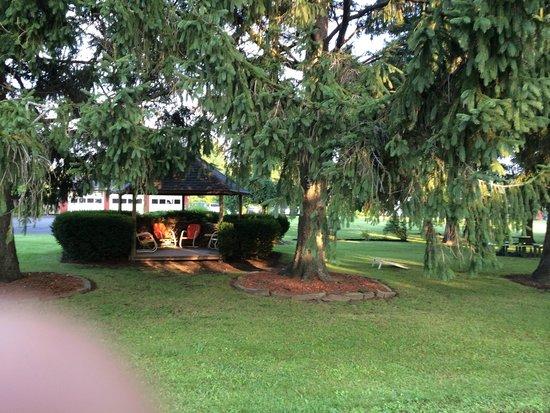 Clark's Motel: Great Park