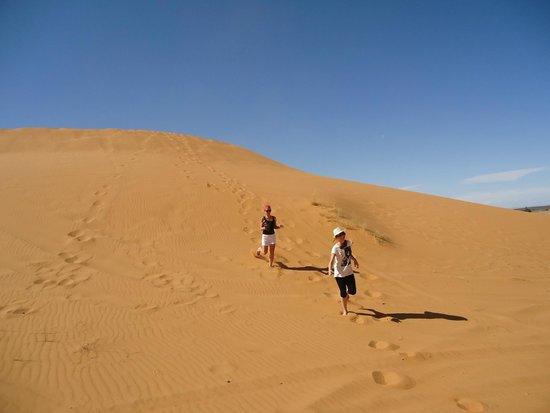 Merzouga Camp: desert