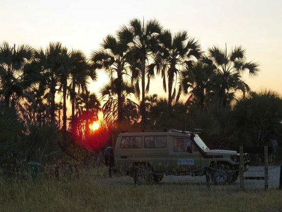 Maramboi Tented Camp : Morning views