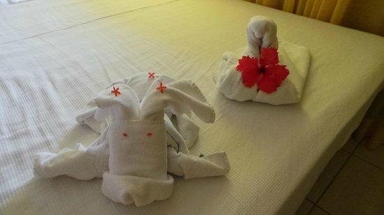 Salinas do Maragogi All Inclusive Resort: Mimo das camareiras