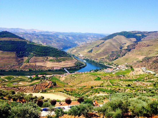 Cooltour Oporto: View of the Douro Valley