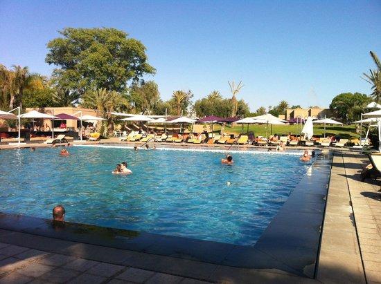 Pullman Marrakech Palmeraie Resort and Spa : Pool