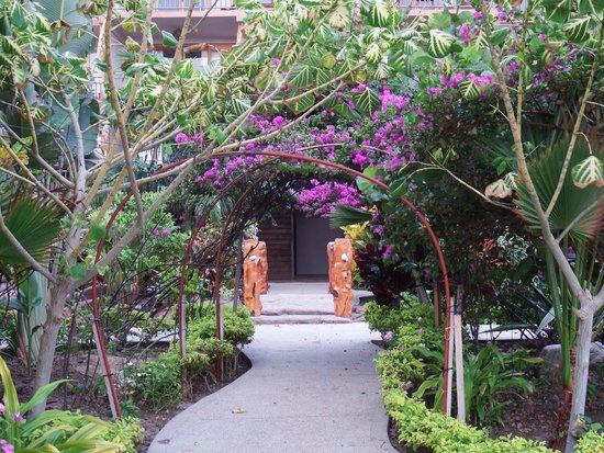 Canoa Beach Hotel: Jardín de entrada
