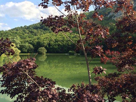 Parco Del Lago: Lago