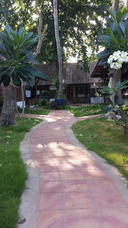 Marine Bungalows: Chemin pour se rendre aux bungalows