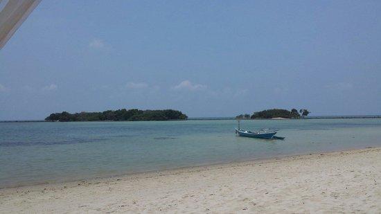 Marine Bungalows: Vue de la plage