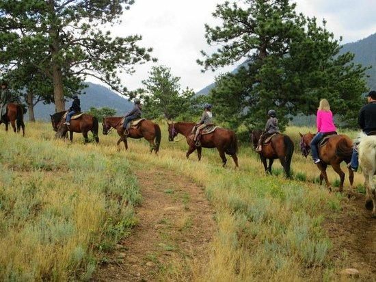 Sombrero Ranch: Fun for the family