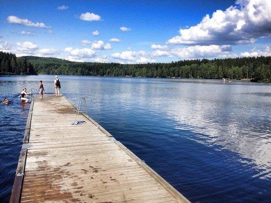 Sognsvann Lake: Great lake for swimming and relaxing!