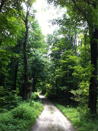 Whitcomb Summit Retreat : A recommended walk - just down the road