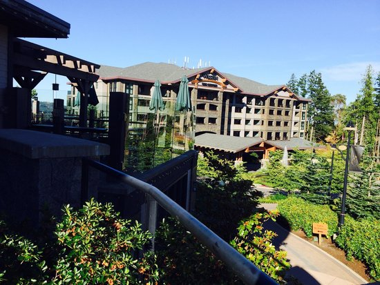 Westin Bear Mountain Victoria Golf Resort & Spa : View from fitness center