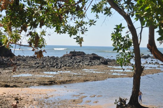 Las Veraneras : Playa