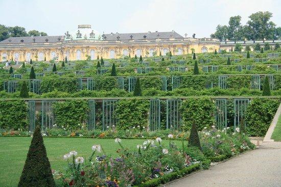 Potsdamer Gärten: Schloss Sanssouci