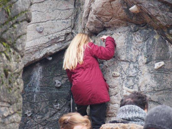 Copenhagen Zoo: Ungerne elskede at lege i den gamle bjørnegrotte