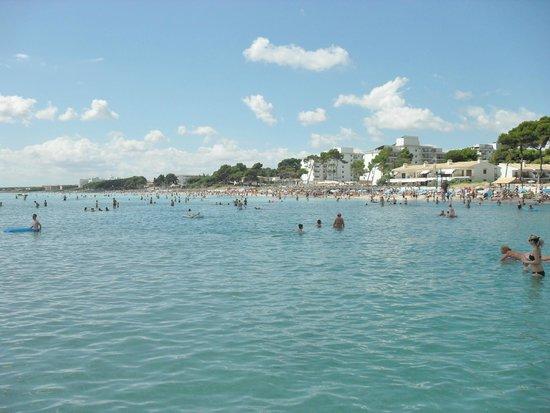 Las Gaviotas Suites Hotel: Beach