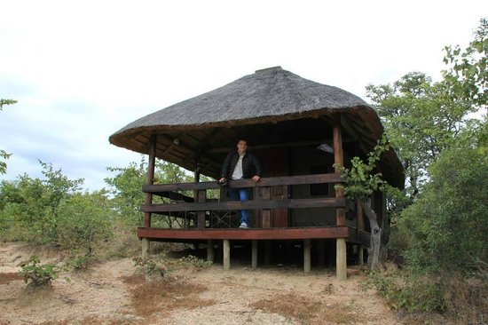 Shindzela Tented Camp : Cabin #8