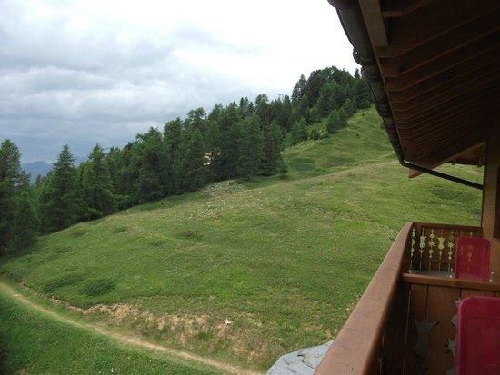 Residence LVH Vacances - Sun Valley : sentier forestier