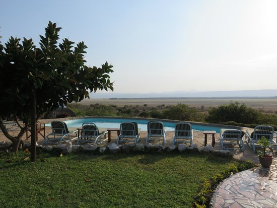Manyara Wildlife Safari Camp: the pool