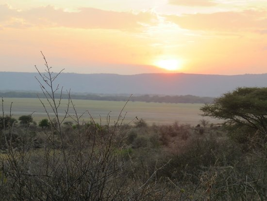 Manyara Wildlife Safari Camp: sunset