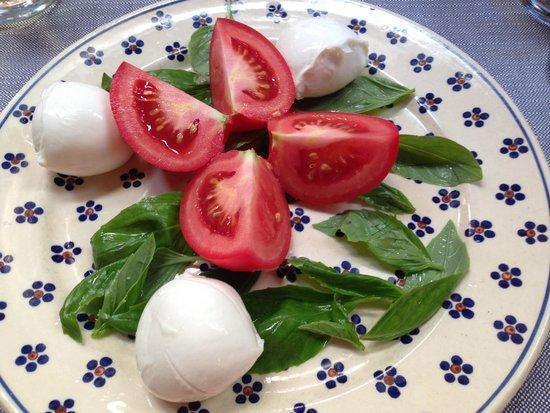 Trattoria dei 13 Gobbi : Mozarella and tomato salad