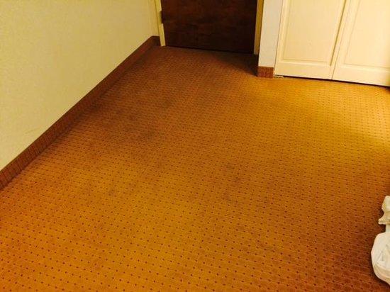 Wyndham Garden Amarillo: badly stained carpet