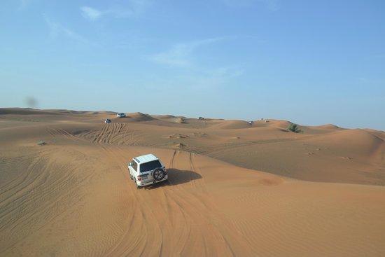 Dubai Desert Conservation Reserve: trilhas no deserto