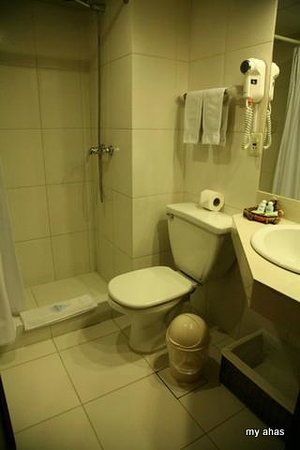 Hotel Rosario La Paz: Bathroom