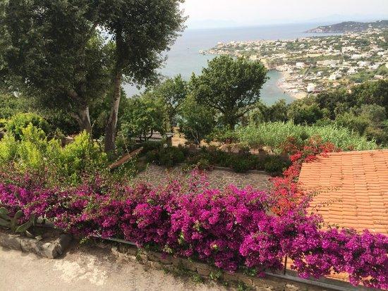 Sweet Poseidon : Panoramica dalla piscina