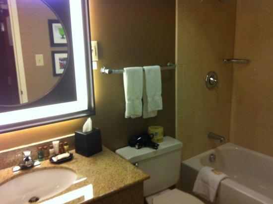 Sheraton Pittsburgh Airport Hotel: Bathroom