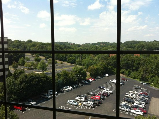 Sheraton Pittsburgh Airport Hotel: View from our room
