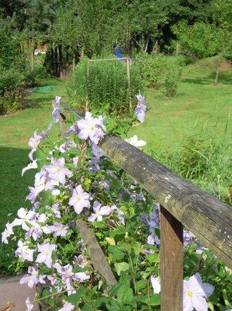 La Charmante : un parc fleuri...