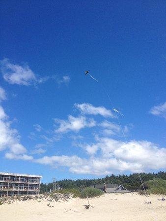 Tolovana Inn: Kite flying on beach in front of Tolovana