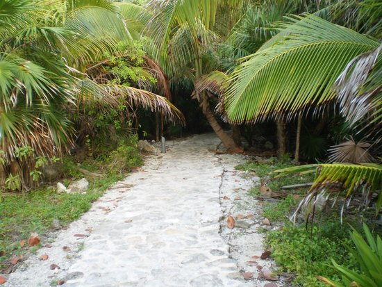Grand Palladium Colonial Resort & Spa: Start of the walk way to salt water pool