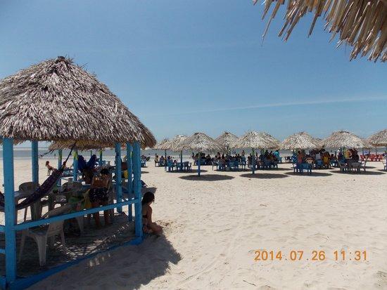 Praia do Pesqueiro : Vista