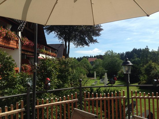 Hotel Grüner Wald: Desde la terraza