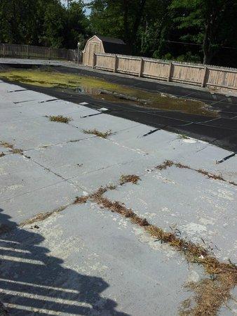 Econo Lodge: Decaying pool