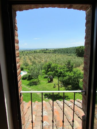 Agriturismo La Falconara: view from upstairs bedroom onto olive grove