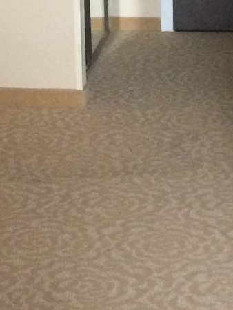 Kansas City Airport Marriott: Stains on old room carpeting.