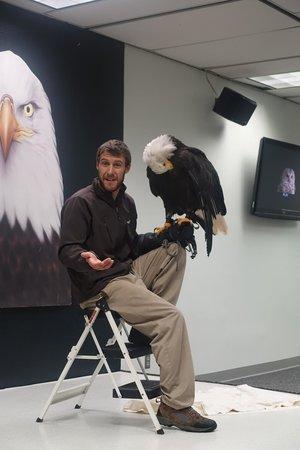 Alaska Raptor Center: Presentation at Raptor Center