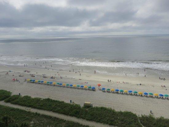 Caribbean Resort And Villas: Aahh, the beach