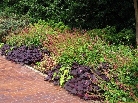 Dallas Arboretum & Botanischer Garten: enterence