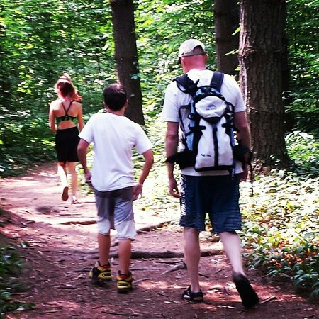 Delaware Water Gap National Recreation Area: Great hike with the family:)