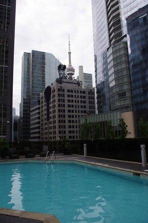 Hilton Toronto: Piscine intérieure et extérieure