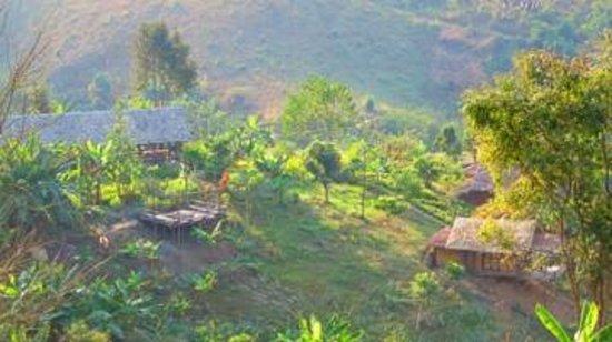 Bamboo Nest de Chiang Rai : das is es das Bamboo Nest