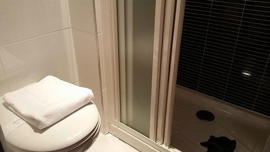 Kyriad Quimper Sud : bathroom small but clean