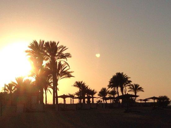 The Oberoi Sahl Hasheesh: Sunset