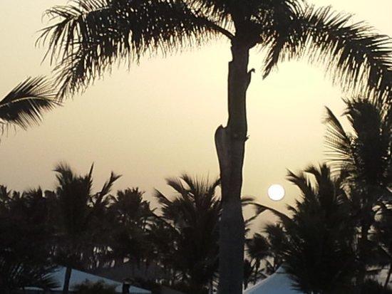 Club Med Punta Cana : Lever de soleil - chambre atlantico
