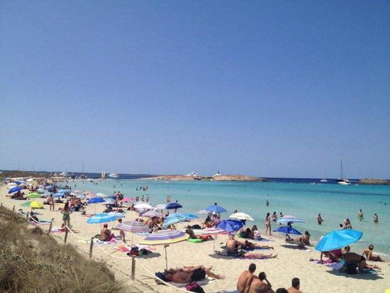 Playa de Ses Illetes: Playa