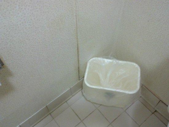 Quality Inn & Suites Fairview : Dirty, peeling wallpaper